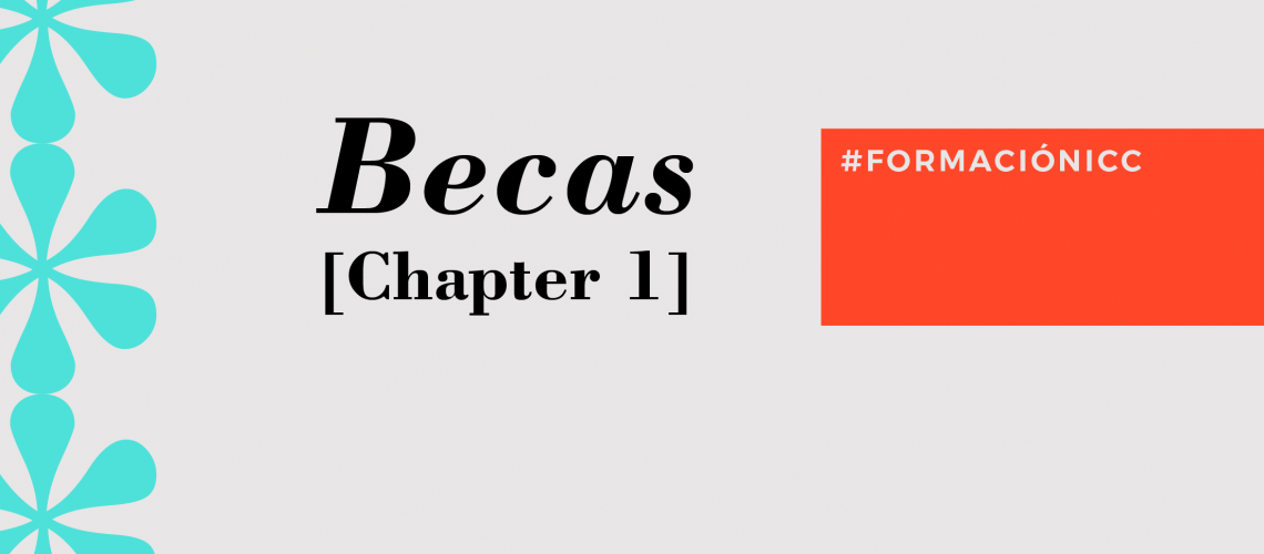 BECAS Chapter 1_becas1web